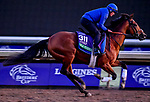 October 30, 2019: Breeders' Cup Turf entrant Old Persian, trained by Charlie Appleby, exercises in preparation for the Breeders' Cup World Championships at Santa Anita Park in Arcadia, California on October 30, 2019. Scott Serio/Eclipse Sportswire/Breeders' Cup/CSM
