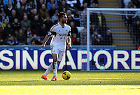 Wednesday, 19 January 2014<br /> Pictured: Jordi Amat of Swansea.<br /> Re: Barclay's Premier League, Swansea City FC v Tottenham Hotspur at the Liberty Stadium, south Wales.