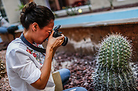 curso Canon academy, hotel Fiesta In. <br /> <br /> Photo: (NortePhoto / LuisGutierrez)<br /> <br /> ...<br /> keywords: