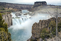 A rip roaring Shoshone Falls at peak flow on record flow year (2017). Every decade or two, the Snake River fills all its reservoirs then can put on this high water show.