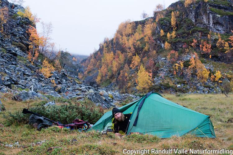 Mann i lite telt i Stabbursdalen nasjonalpark en fuktig høstdag. ---- Man in small tent in Stabbursdalen national park.
