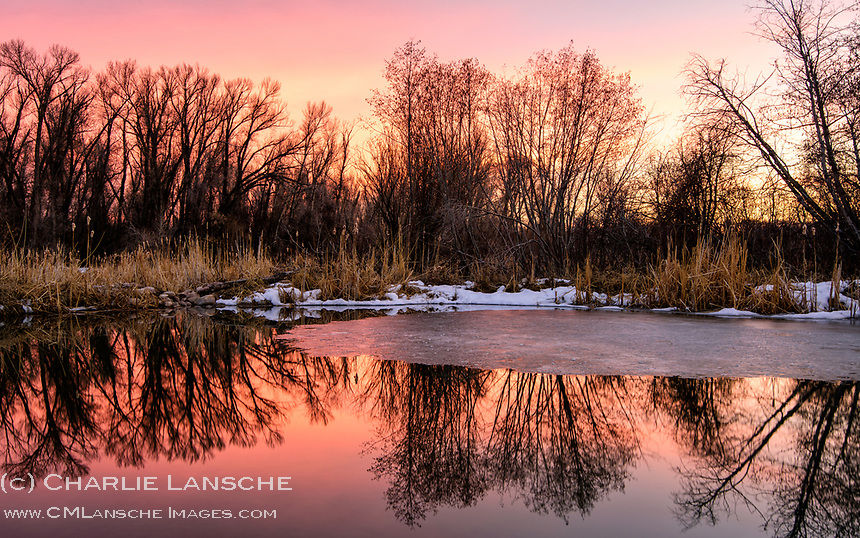 Reflection. Took a walk down by the pond this evening. Nice to smell the earth once more as melting winter snows and retreating ice reveal what autumn left behind. The faint calls of returning sandhill cranes signaled that spring is just over the horizon. Summit County, Utah.