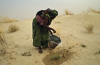 Women watering young plant of Tamarix for dune fixation