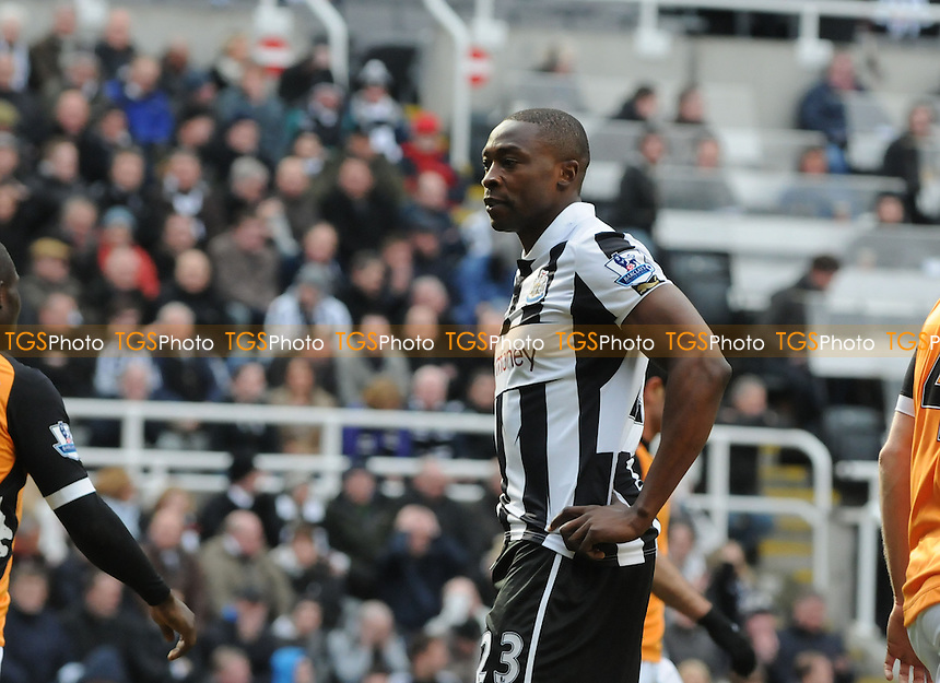 Shola Ameobi of Newcastle United is left frustrated  - Newcastle United vs Fulham - Barclays Premier League Football at St James Park, Newcastle upon Tyne - 07/04/13 - MANDATORY CREDIT: Steven White/TGSPHOTO - Self billing applies where appropriate - 0845 094 6026 - contact@tgsphoto.co.uk - NO UNPAID USE