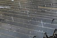 ATENÇÃO EDITOR: FOTO EMBARGADA PARA VEÍCULOS INTERNACIONAIS. - SAO CAETANO DO SUL, SP, 28 de Novembro 2012 CLIMA GRANIZO- Chuva de granizo em Sao Caetano do Sul (ABC).(FOTO: ADRIANO LIMA / BRAZIL PHOTO PRESS).