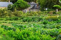 France, Sarthe (72), Le Lude, château et jardins du Lude, le potager,