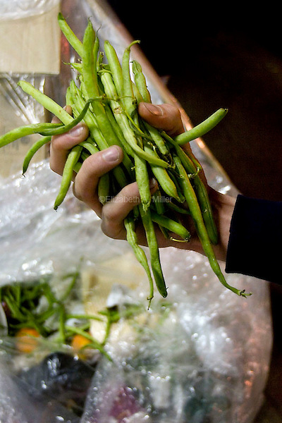Fresh green beans among the vegetables recoved from refuse outside D'Agnostino's.