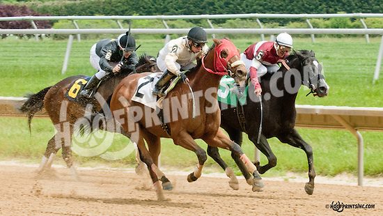 Vigilante Law winning at Delaware Park on 5/27/13.