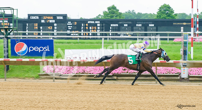 Vince's Valentina winning at Delaware Park on 7/8/15