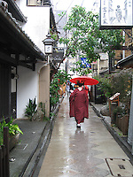 Geisha walks down a narrow street in  Pontocho - Kyoto, Japan