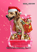CHIARA,CHRISTMAS ANIMALS, WEIHNACHTEN TIERE, NAVIDAD ANIMALES, paintings+++++,USLGCHI490,#XA# ,funny ,funny