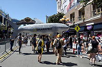 NATIONAL GEOGRAPHIC AT SAN DIEGO COMIC-CON© 2019: National Geographic's SHARKFEST on Saturday, July 20 at SAN DIEGO COMIC-CON© 2019. CR: Frank Micelotta/National Geographic © 2019 National Geographic