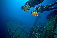 Plongée sur l'Augustin Fresnel à 26 mètre de profondeur. Le scooter sous-marin est un vrai bonheur. Speed : 1/320 S. Ouverture : f/6,3. Focal : 8,0 mm. ISO : 400.