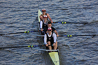 Crew: 22  TRC (O)  Thames RC (M Cummings)  4- Champ<br /> <br /> Fours Head of the River 2018<br /> <br /> To purchase this photo, or to see pricing information for Prints and Downloads, click the blue 'Add to Cart' button at the top-right of the page.