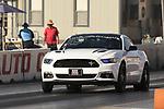 Mustang Madness