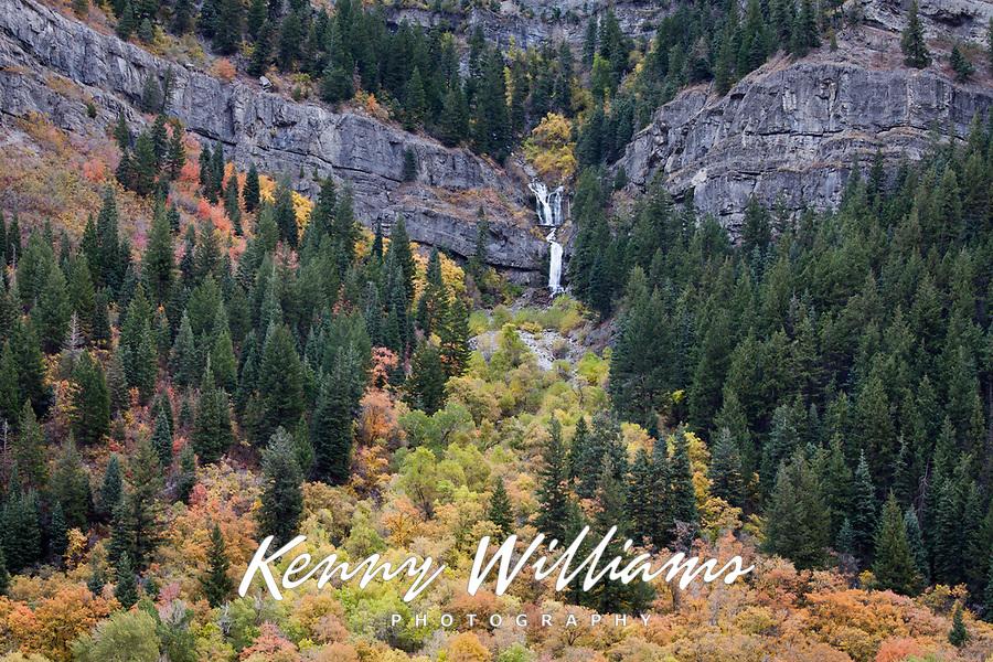 Waterfall & Autumn Fall Colors, Provo Canyon, Utah, USA.