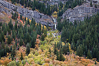 Waterfall & Autumn Fall Colors, Provo Canyon, Utah, USA.