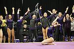 OSU & SPU vs UW Gymnastics 3/14/14