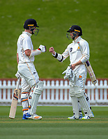 Michael Bracewell and Devon Conway on day one of the Plunket Shield cricket match between Wellington Firebirds and Otago Volts at the Basin Reserve in Wellington, New Zealand on Wednesday, 17 October 2018. Photo: Dave Lintott / lintottphoto.co.nz