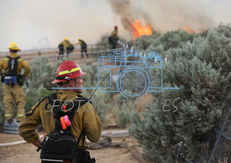 Firefighters fight the Voltaire fire in south Carson City, Nev., on Tuesday, Aug. 22, 2017.  <br /> Photo by Cathleen Allison/Nevada Photo Source