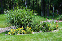 Miscanthus sinensis Strictus with Oenothera, Echinacea, Hemerocallis, Astilbe, in shade with lawn under trees next to dry stream with stone pebbles around a raised septic field