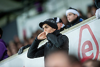 fans during the Barclays Premier League match between Swansea City and West Ham United played at the Liberty Stadium, Swansea  on December 20th 2015