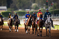 ARCADIA, CA - FEBRUARY 04: Hoppertunity #1, ridden by Flavien Prat before the San Antonio Stakes at Santa Anita Park on February 4, 2017 in Arcadia, California. (Photo by Alex Evers/Eclipse Sportswire/Getty Images)