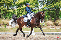 01-ALL RIDERS: 2018 NZL-North Island Dressage and Para-Equestrian Championships