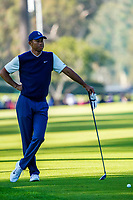 Tiger Woods (USA) In action during the third round of the The Genesis Invitational, Riviera Country Club, Pacific Palisades, Los Angeles, USA. 14/02/2020<br /> Picture: Golffile | Phil Inglis<br /> <br /> <br /> All photo usage must carry mandatory copyright credit (© Golffile | Phil Inglis)