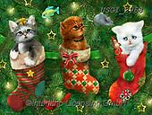 GIORDANO, CHRISTMAS ANIMALS, WEIHNACHTEN TIERE, NAVIDAD ANIMALES,cats,dogs, paintings+++++,USGI2968,#xa#