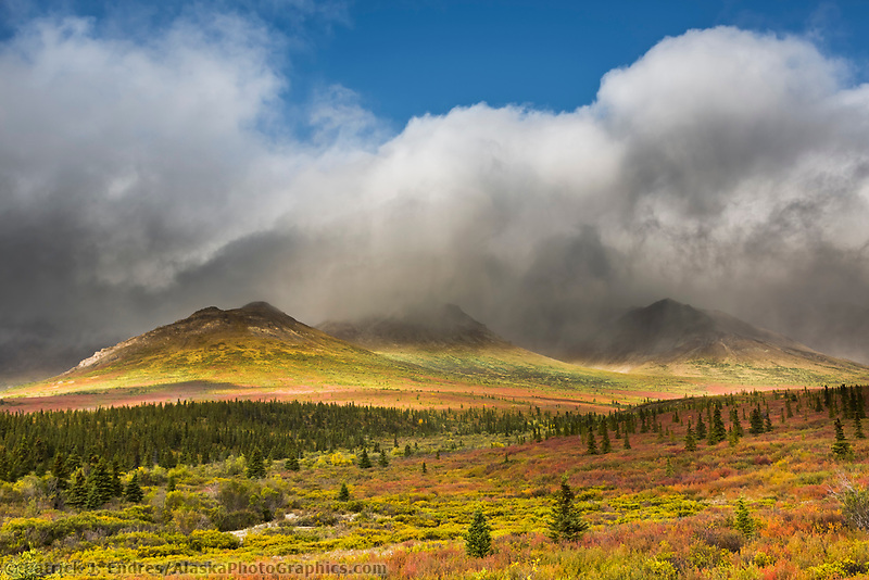 Alaska Range mountains, Denali National Park, Interior, Alaska