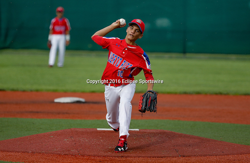 ABERDEEN, MD - AUGUST 01: Kennel Rosado #10 of Puerto Rico pitches against New Zealand during the 1st inning in a game between New Zealand and Puerto Rico during the Cal Ripken World Series at The Ripken Experience Powered by Under Armour on August 1, 2016 in Aberdeen, Maryland. (Photo by Ripken Baseball/Eclipse Sportswire/Getty Images)