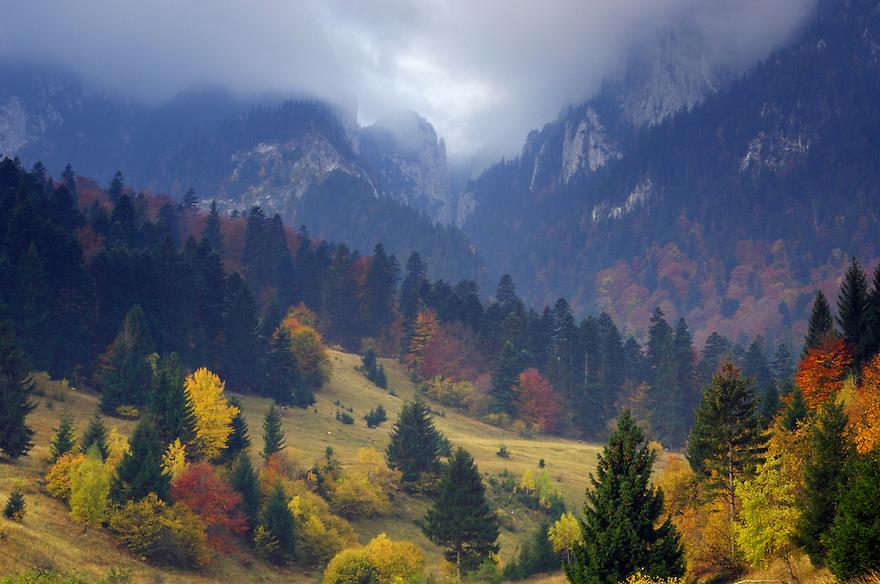Rock of the King, National Park Piatra Craiului, Transylvania, Southern Carpathians, Romania