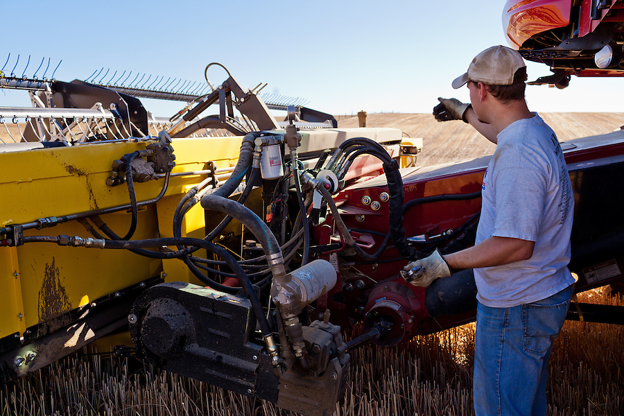 A farmer supervises maintenance on his Case 8120 combine.