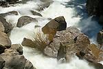 Cascade Falls, spring, Yosemite National park