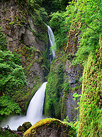 Tanner Creek Falls. Columbia River Gorge National Scenic Area, Oregon
