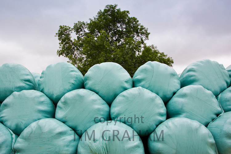 Plastic covered silage hay bales, Cotswolds, United Kingdom