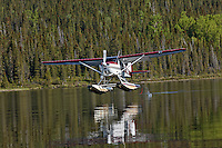 Float plane taking off from small lake, Alaska