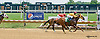 Newton Crescent winning at Delaware Park racetrack on 7/14/14
