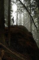 Heading up Mount Ellinor, Washington.