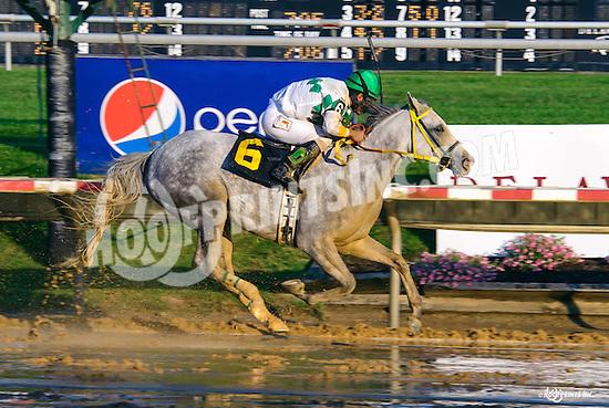 Lady Haha winning at Delaware Park on 7/9/16