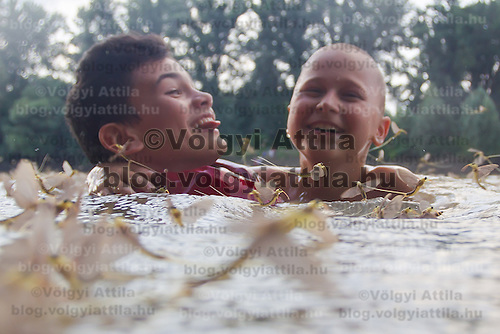 Boys swim among insects during the yearly few days long swarming of the long-tailed mayfly (Palingenia longicauda) on the river Tisza in Tiszainoka (some 135 km south-east from Budapest), Hungary on June 23, 2013. ATTILA VOLGYI<br /> The long-tailed mayfly larves live 3 years under water level in the river banks then swarm out for a one day period of their life to die after mating.