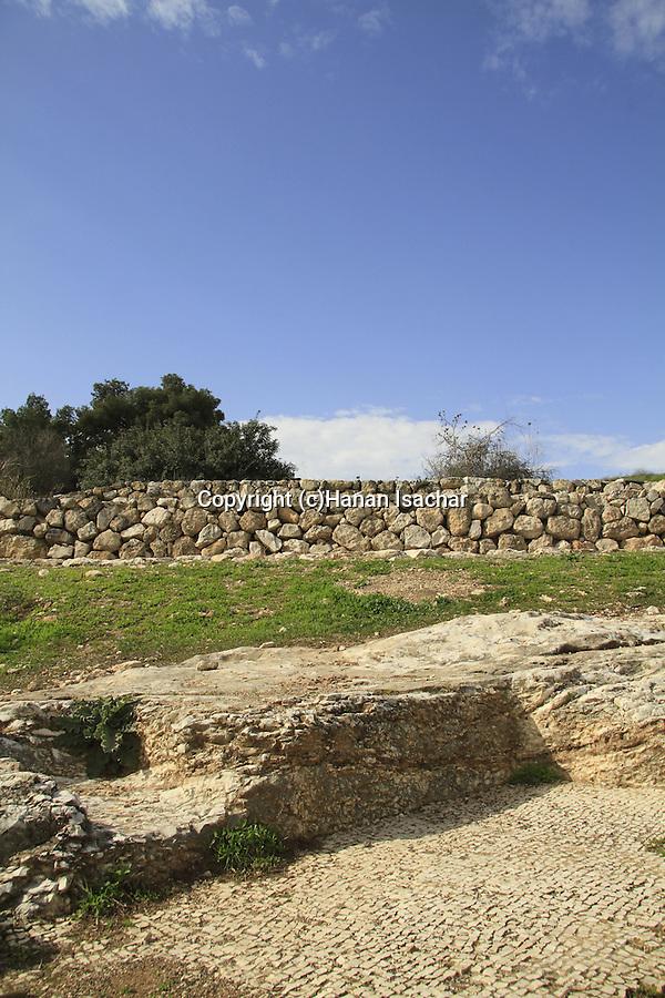 Israel, Jezreel Valley, a Byzantine wine press in Tel Jezreel