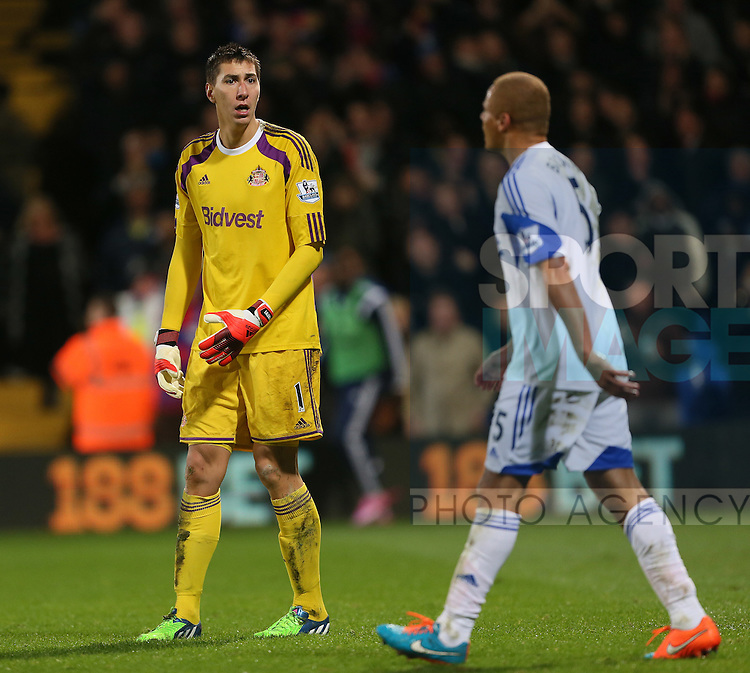 Sunderland's Costel Pantilimon looks in disbelief after Wes Brown's own goal<br /> <br /> - Barclays Premier League - Crystal Palace vs Sunderland- Selhurst Park - London - England - 3rd November 2014  - Picture David Klein/Sportimage