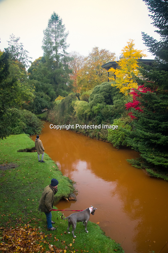 "15/10/18<br /> <br /> Complimenting the stunning autumnal colours in Pavilion Gardens, Buxton, Derbyshire, the river Wye has turn a vivid orange colour. <br /> <br /> The rare phenomenon, is explained on the 'Explore Buxton' website: ""After periods of heavy rain the river flowing through the town often turns a striking orange colour. This is caused when the river level raises and flows through iron bearing strata from the remains of coal mining workings in Burbage""<br /> <br /> <br /> All Rights Reserved, F Stop Press Ltd. (0)1335 344240 +44 (0)7765 242650  www.fstoppress.com rod@fstoppress.com"