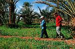jean Lou et Félix dans la palmeraie de Lhemrach. Grand sud marocain. Maroc