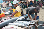 women are cleaning the fish at the fish market of puerto lopez ecuador