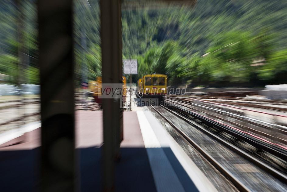 Europe/France/Languedoc-Roussillon/66/Pyrénées-Orientales/Conflent/Villefranche-de-Conflent: Le Train jaune de Cerdagne arrive en gare