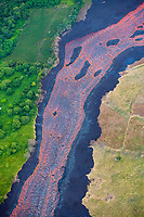 aerial view of a wide lava river flowing between green orchards on the windward side, and scorched vegetation on the downwind side, the lava is originating from the east rift zone of Kilauea Volcano, erupting from fissure 8 in Leilani Estates subdivision, near Pahoa, Puna, Big Island, Hawaii, USA