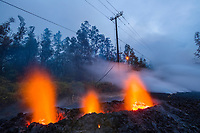 lava emanating from Pu'u O'o on Kilauea Volcano, glows from a new fissure (Fissure 13) that has opened up in the middle of Leilani Avenue in Leilani Estates subdivision, near Pahoa, Puna, Big Island, Hawaii, USA, while insulation burns off electric power lines in the background